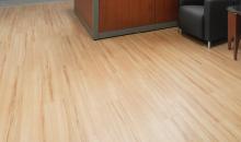 LSI Floors
